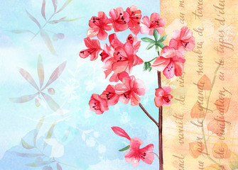Vintage background texture with watercolour branch of pink flowers
