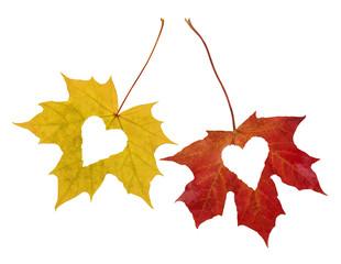 Autumn_Love