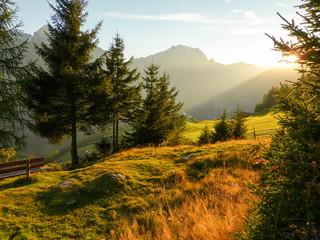 Fototapete - Herbstlicht in den Alpen