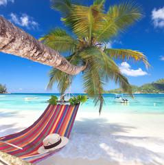 perfekter Platz im Paradies