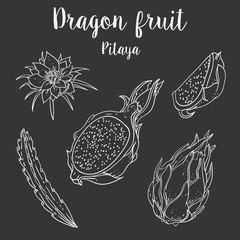 Pitaya vector fruit organic set