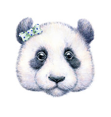 Panda on white background. Watercolor drawing. Children's illustration. Handwork