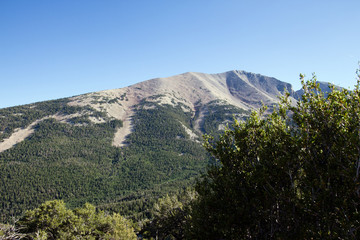 Great Basin National Park, Wheeler Peak