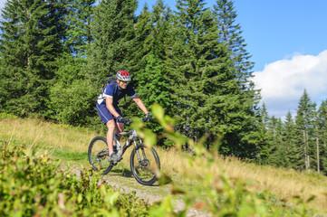 Fototapete - Downhill mit dem Mountainbike am Feldberg
