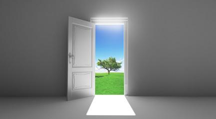 Stanza porta aperta su campo albero
