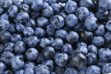 Blueberries background, close up, tasty and sweet
