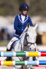 Horse rider pole gates equestrian show jumping action