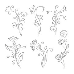Decorative floral elements for design.