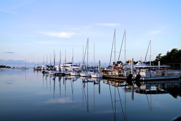Coconut Grove marina, Sailboats