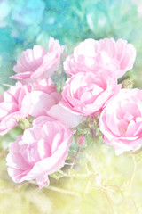 Abstract artistic background with beautiful pink roses