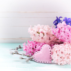 Background with fresh flowers hyacinths and decorative  pink hea