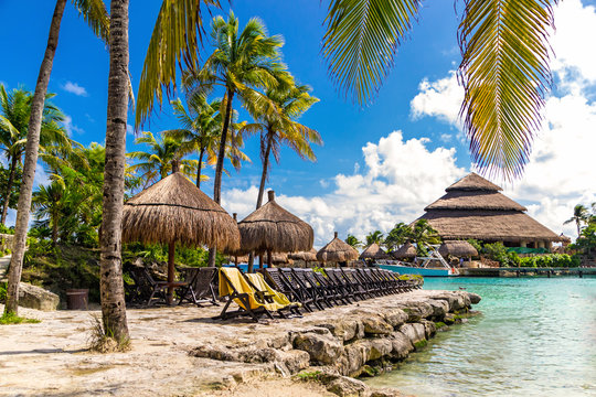Relax in Mexico. Beach with sun beds under the palm trees.