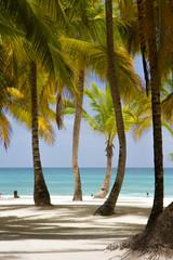 Recess Fitting Caribbean Paradise