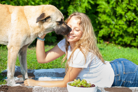 Beautiful teenager girl playing with a dog, picnic, summer time
