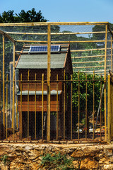Solar-cell on the roof of chicken house