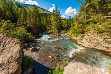 Wall Mural - Alpine River in Switzerland