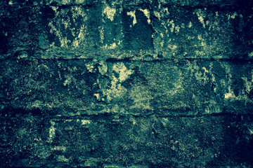 Mold on the walls, old walls
