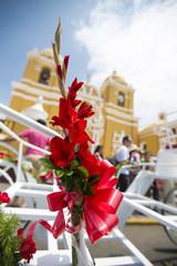Red flower, blue sky and yello church in Trujillo, Peru