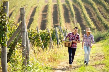 Romantic couple walking through vineyard