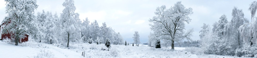Swedish Winter Landscape Panorama