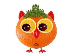 Creative food concept. Little  Owl made from orange