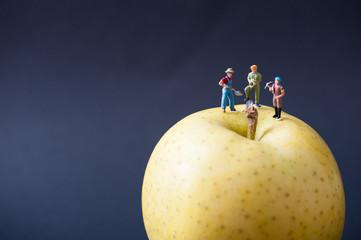 果物と働くミニチュア人形
