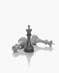 Chess pieces kings