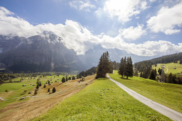 Mountain peaks, streams and meadows in Grindelwald, Switzerland