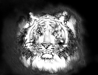 mighty tiger head. Black and white. abstract background eye