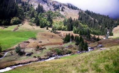 Beautiful Swiss meadows, valleys and peaks above Grindelwald, Switzerland