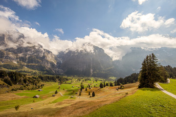 Beautiful Swiss meadows, valleys and peaks above Grindelwald, Switzerland