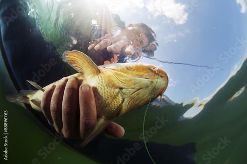 живая рыба ловить сонник
