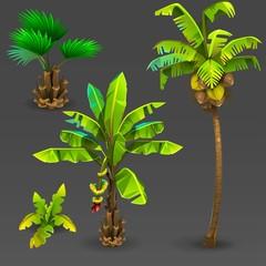 Tropical set 3