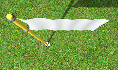 Golf Hole And Flag