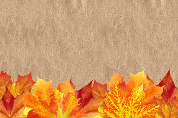 Bright Autumn Maple Leaves over Old Paper Texture