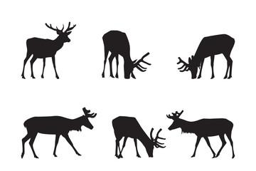 Buck Deer Silhouettes