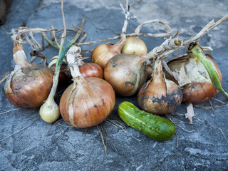 Onions with cucumber