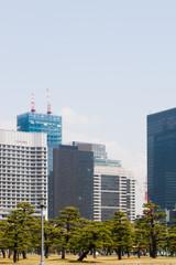 Skyline von Tokyo Japan