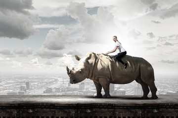 Fototapete - Woman ride rhino