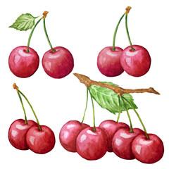 watercolor cherry set