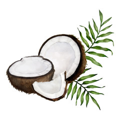 coconut composition