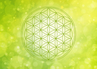 flower of life - green nature flow