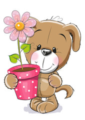 Puppyy with flower