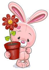 Rabbit with flower