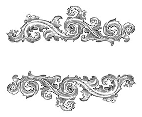 Beautiful Baroque  style decorative calligraphy floral vector