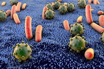 Bacteria and viruses on surface of skin, mucous membrane or intestine, model of MERS, HIV, flu, Escherichia coli, Salmonella, Klebsiella, Legionella, Mycobacterium tuberculosis, model of microbes