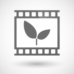 Photographic film icon with a plant