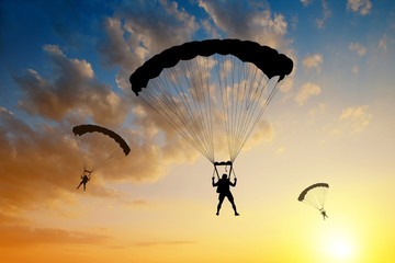 Wall Murals Sky sports Silhouette skydiver parachutist landing