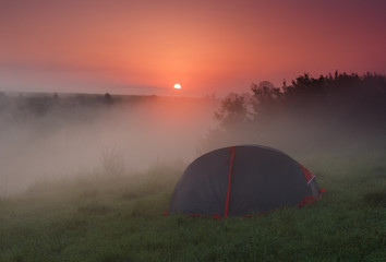 Tourist tent on green meadow at sunrise. Camping background. Freedom concept.