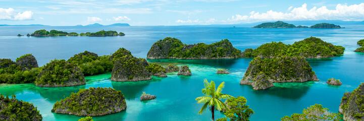 Obraz Fam Island in Raja Ampat - fototapety do salonu